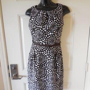 London Times Shift Dress Brown/Ivory Polka-Dot
